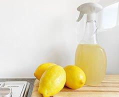 fresh lemon degreaser - Resources